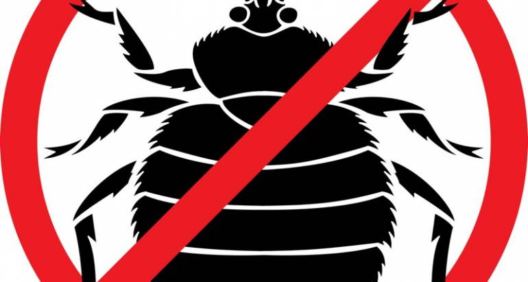 Bed Bug Control for Hotels and Homes