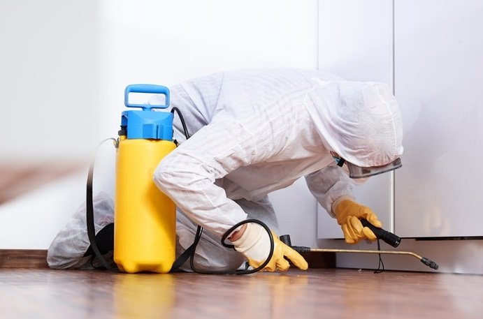 How to Save Money during Commercial Pest Control in Toronto