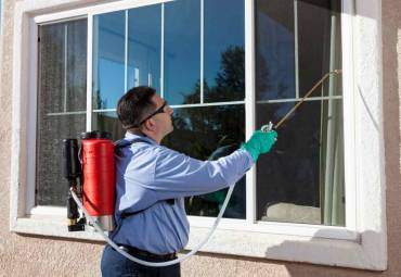 Exploring the Three Main Types of Pest Control Services in Toronto